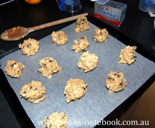 chunky oatey choc-orange biscuits