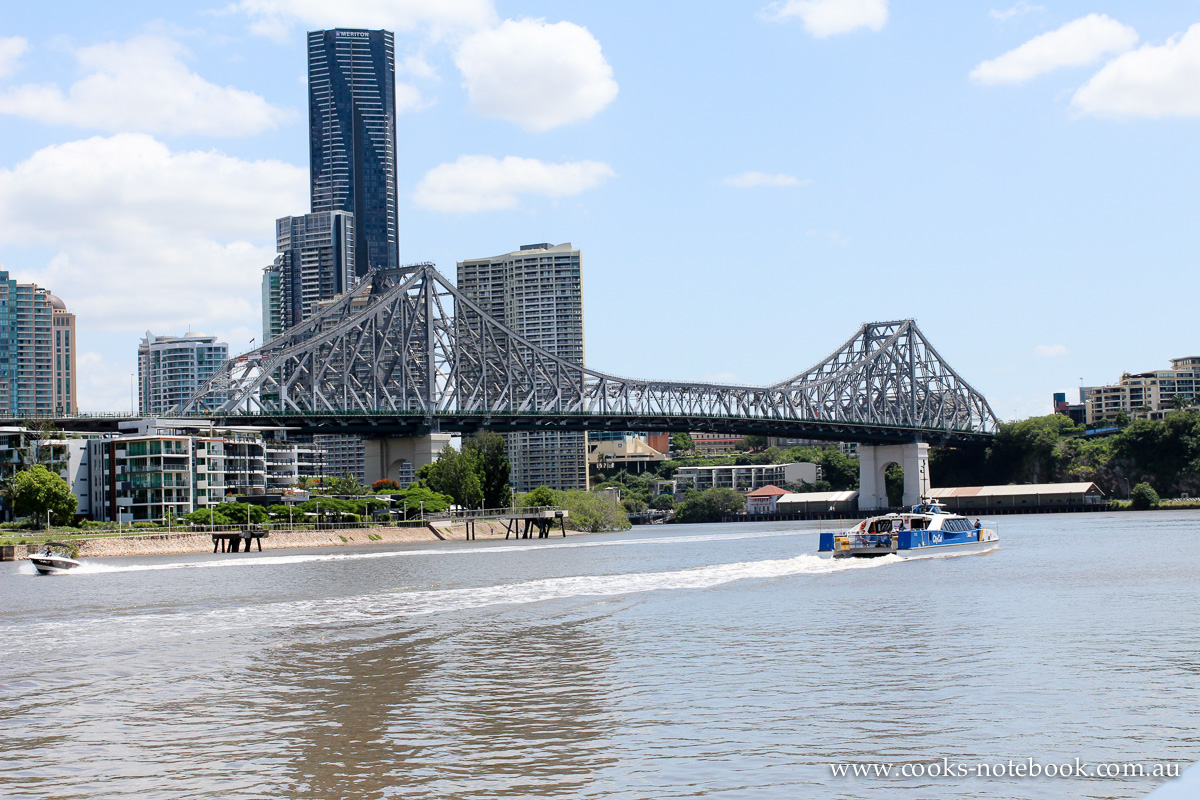 The day I was dragged on a 3 hour walk. Around the Brisbane River. And it was 32c.