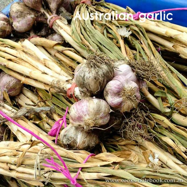 Australian garlic
