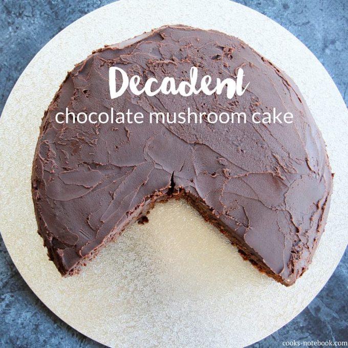 Decadent chocolate mushroom cake